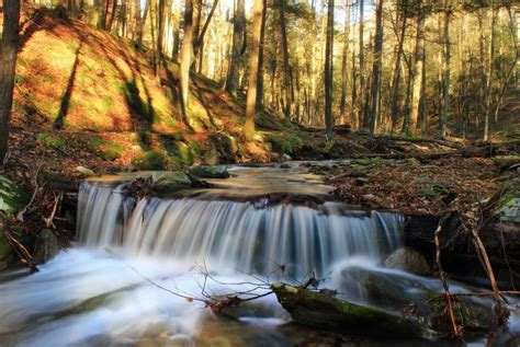 Free picture: ecology, moss, water, waterfall, river, wood
