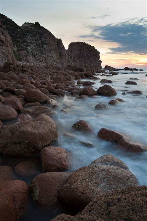 Photo Gallery - Phillip Island Nature Parks